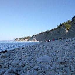 Раннее утро на диком пляже